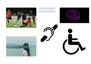 Arten von Behinderungen